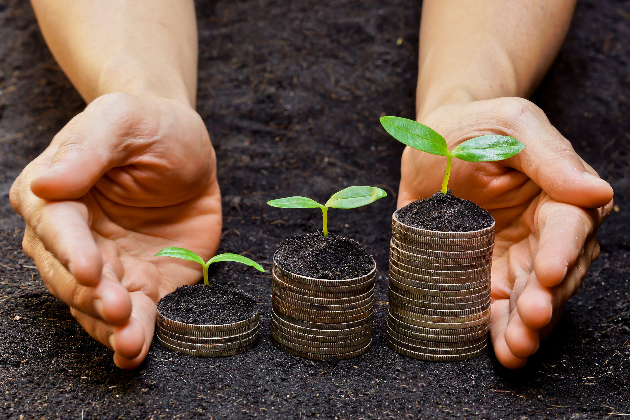 ESG and Socially Responsible Investments